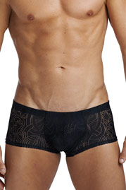 L´HOMME INVISIBLE DEVORE NOIR Mini Pants auf oboy.de